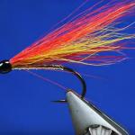 Fliegenfischer-Tag 2019